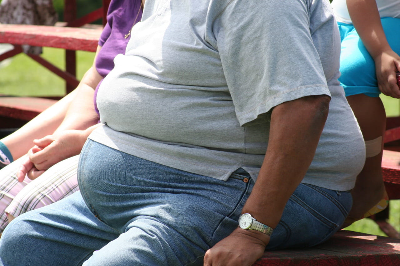 EUs population is overweight