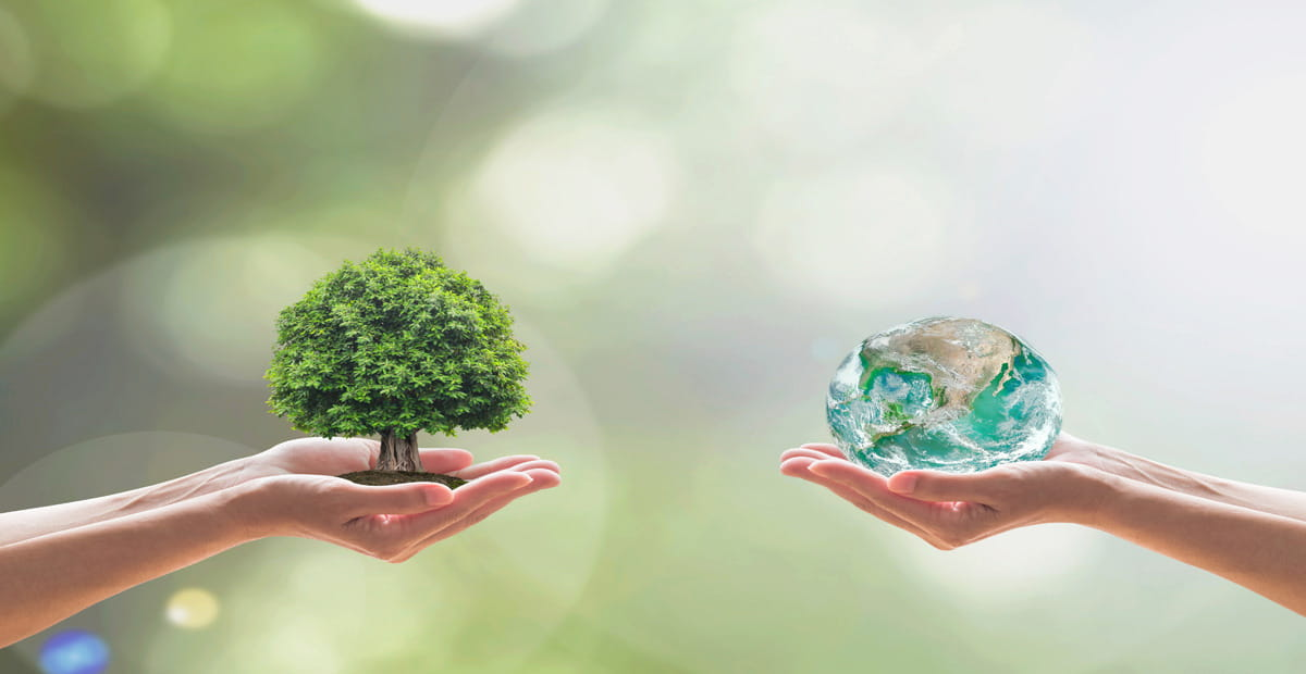 Human hands holding earth globe and tree