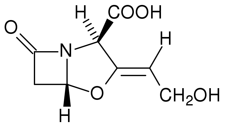 The molecular structure of clavulanic acid