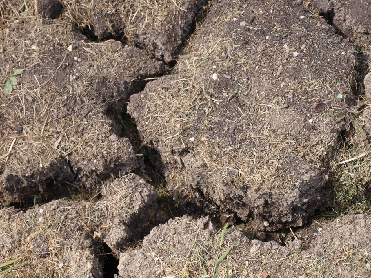 cracked-clay-soil