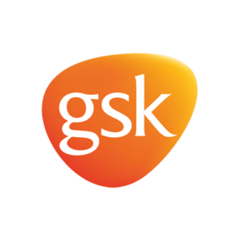 SCI Bright SCIdea Supporting Partner logo - GSK