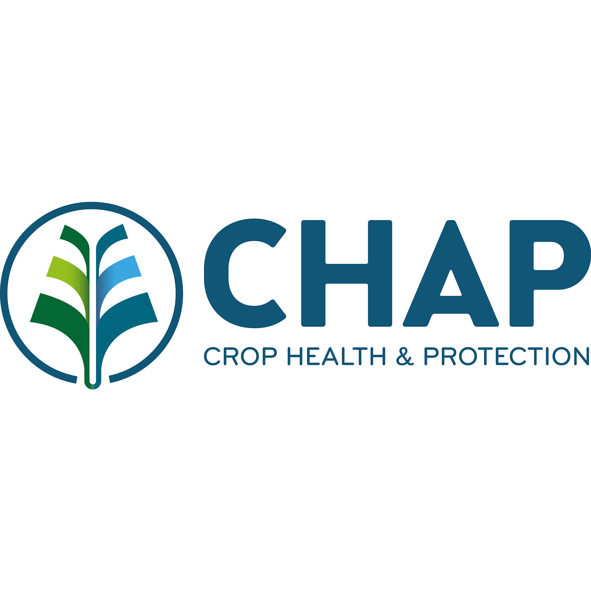 chap-solutions