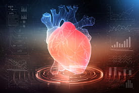 3D modelling of a heart