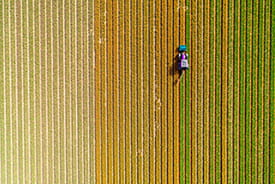 aerial view of crops and tractor