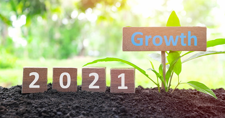 SCIblog - 14 January 2021 - 2021: 'A year to look forward to.' - image of a plant with a sign saying 'Growth 2021'
