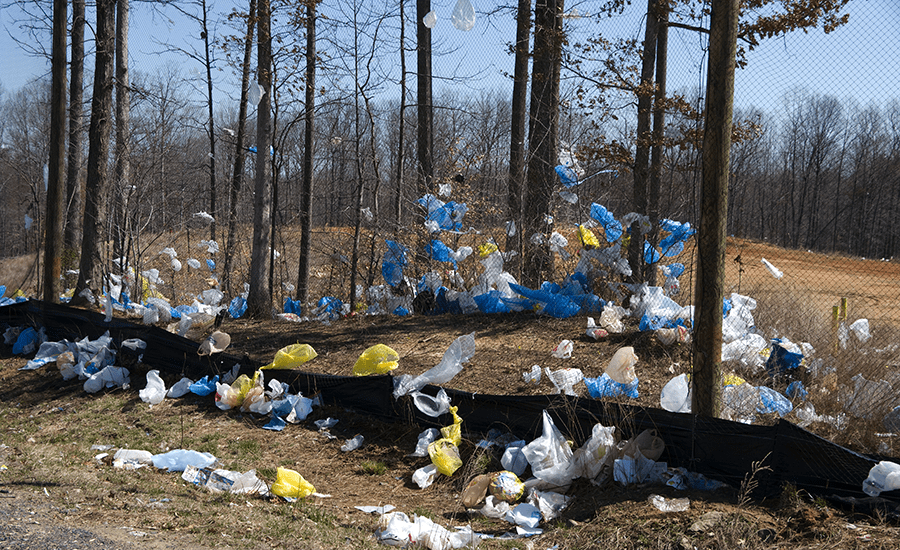 SCIblog 11 February 2021 - image of plastic waste in nature