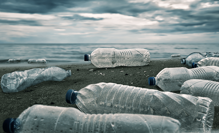 SCIblog 11 February 2021 - image of plastic bottles on a beach